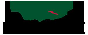[Image: Logo Lacoste]